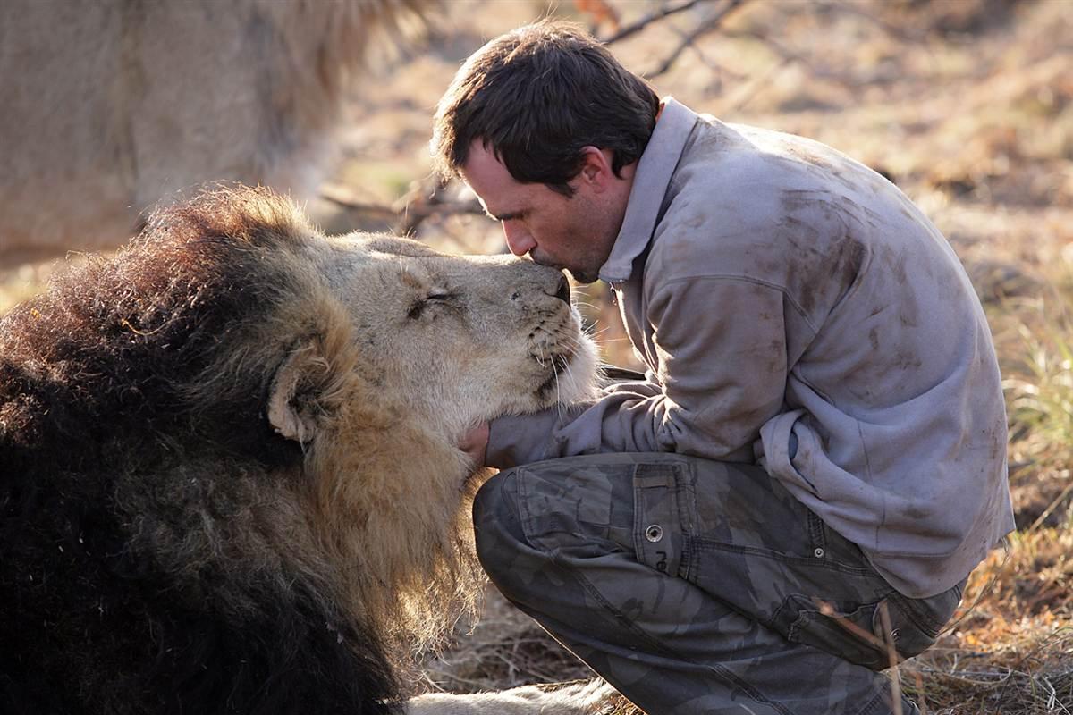 Menyayangi Binatang Bisa Masuk Syurga Guide Us To The Straight